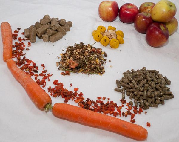 sind vitamintabletten gesund