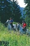 Das Lipizzaner-Gestüt am Achensee – Reiten in Österreich