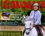Presseschau: CAVALLO Februar 2012 – Psycho-Special Pferde, Hilfe bei Sehnenschäden, Richtig Loben, Reitersitz verbessern