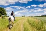 Fragen zur Gesundheit: Ist Reiten gut für den Rücken?