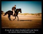 """""""Der – auf dem du sitzt"""" – Natural Horsemanship Kurs 31.08. – 02.09.2012 mit Robin Shen in Südfrankreich"""