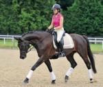 Die Losgelassenheit des Pferdes – Ausbilden und Reiten ohne Zwang