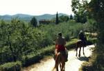 Echte Cowboys in Europa? Die Maremma, der Wilde Westen der Toskana