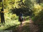 Pferdesprüche: Die Stunden im Sattel